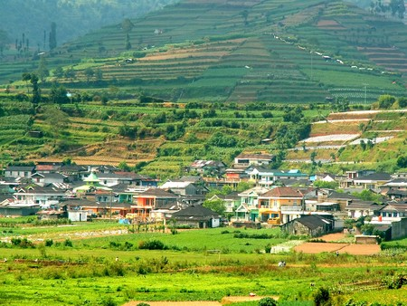Green fields around a village at Dieng Plateau, Indonesia Stock Photo