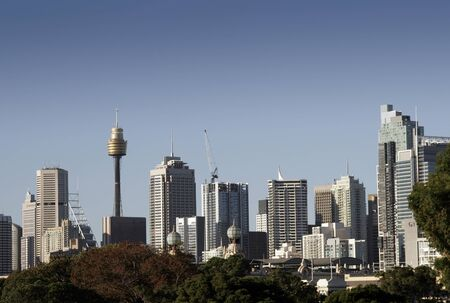 treetops: Sydney City Skyline On A Summer Day, Cityscape, Clear Blue Sky, Australia