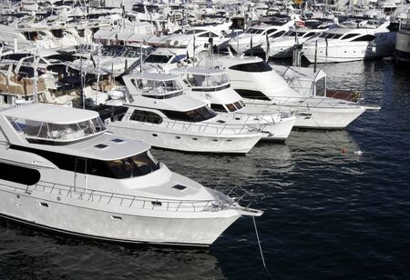 Many Yachts Lying At Darling Harbour, Sydney photo