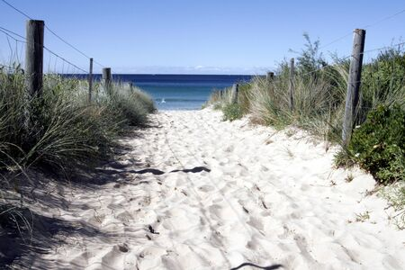 Sandy Path to the Beach - Sydney Australia photo