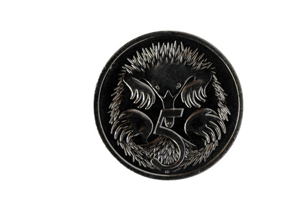 echidna: Australian Five Cent Coin, Currency, Money, Isolated On White