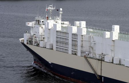 seafreight: White Container Ship