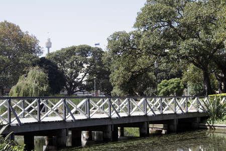 public park: Poco puente con la reflexi�n de agua en un estanque, parque p�blico, Sydney Tower, Australia  Foto de archivo