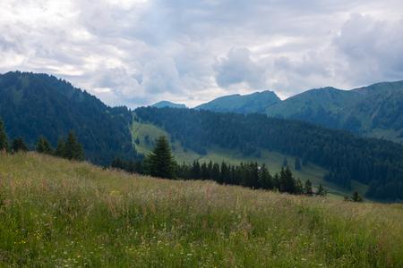 Beierse Alpen met bergmening en weiden in Allgau Stockfoto - 86104793