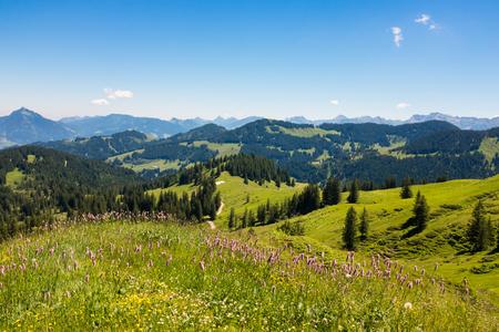 Beierse Alpen met bergmening en weiden in Allgau Stockfoto - 86029540