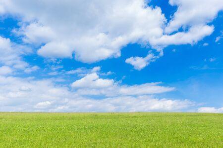 Groen veld en blauwe lucht met lichte wolken Stockfoto - 86029556