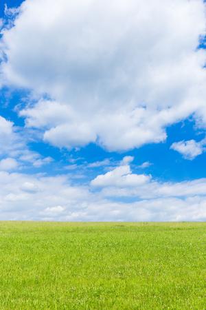 Groen veld en blauwe lucht met lichte wolken Stockfoto - 86029558