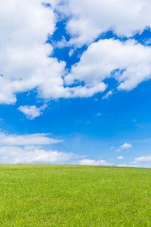 Groen veld en blauwe lucht met lichte wolken Stockfoto - 86029559