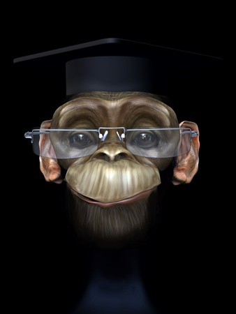 professor chimp Stock Photo - 10480750