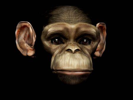 human evolution: monkey 3d Stock Photo