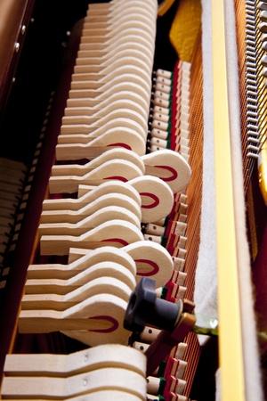 lied: piano music