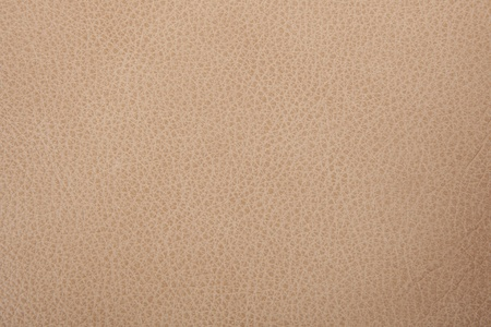 leather texture background Stock Photo - 10495320