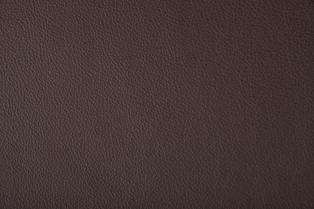animal texture: leather texture background