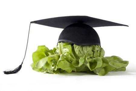 doctoral: cibo sano � buono per il tuo cervello Archivio Fotografico