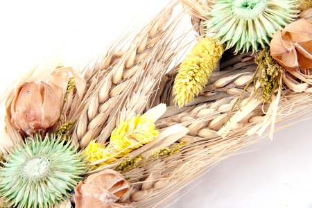 sustainably: wheat Stock Photo