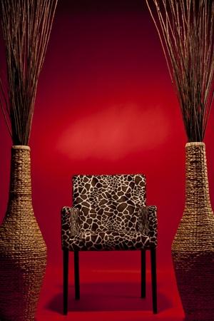 trono: rey de la selva