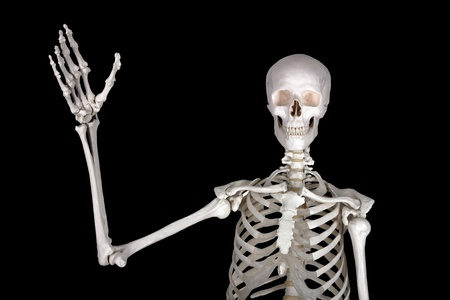 skelett mensch: Willkommen in der Horror-Show: greepy Gr��e Lizenzfreie Bilder