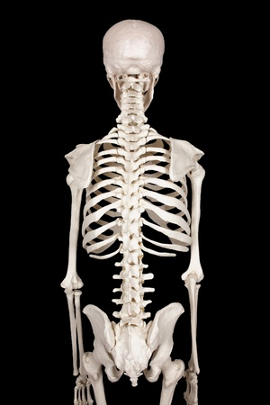 muscle tension: spine black backround