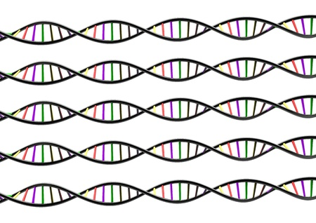 DNA STRAND genetic genome on white  Stock Photo