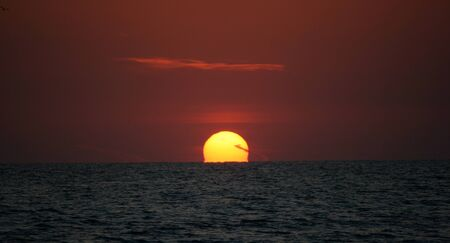 sizzle: Ocean Sunset