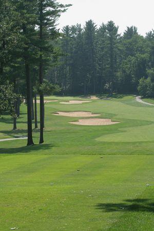 Golfing Banco de Imagens