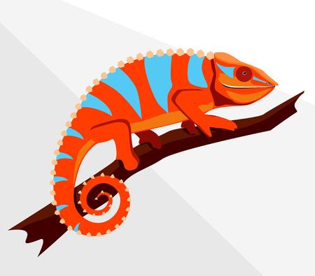 chameleons: Illustration of chameleon on a tree branch