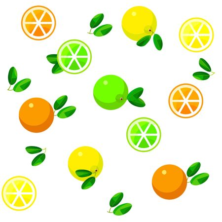 citrus fruits: Seamless pattern background with citrus fruits on white background