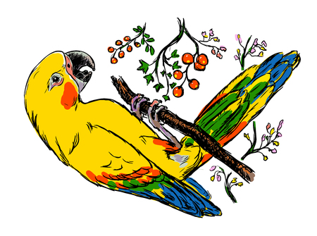 illustration of bright colorful parrot. Isolated big exotic bird sits on a branch. Detailed drawing of a beautiful yellow macaw with flowers.