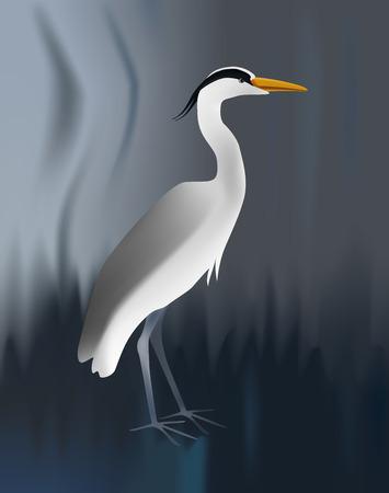 illustration of grey heron on blurred background. Standing light bird.