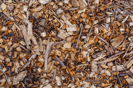 Background texture of tree wood chip mulch ground cover looking head down, brids eye view.