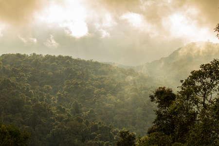 tourist attraction: Tropical rainforest at Phu thap boek, Phetchabun Province, Thailand