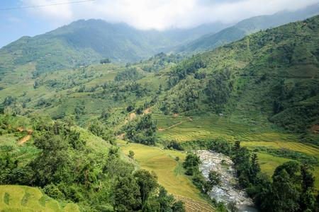 soil: Rice fields on terraced of Sapa, Sapa District, Lao Cai Province, Northwest Vietnam