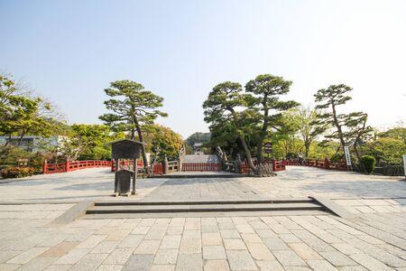 hachimangu: Tsurugaoka Hachimangu shrine, Shinto shrine in the city of Kamakura, Japan Editorial