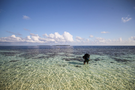 vilamendhoo: View of vilamendhoo island in the Indian Ocean Maldives