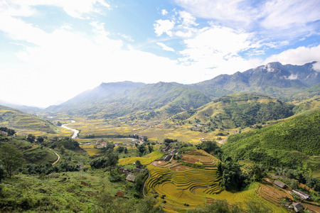 Rice fields on terraced of Sapa, Sapa District, Lao Cai Province,  Northwest Vietnam 免版税图像