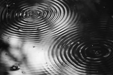Water Striders with two round wave Stock Photo