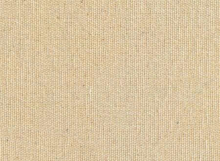 scanned: High quality texture of the cotton canvas, the high accuracy of the details