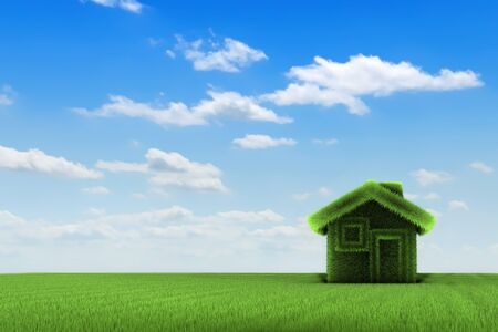 Grass house on a grass field, front view, 3d rendering