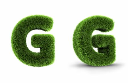 Grass letter g, isolated on white background Stock Photo