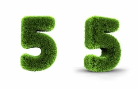 Gras Nummer fünf, isoliert auf weiß Hintergrund 5 Standard-Bild