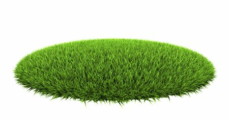 grass: Grass arena isolated on white background, 3d render Stock Photo