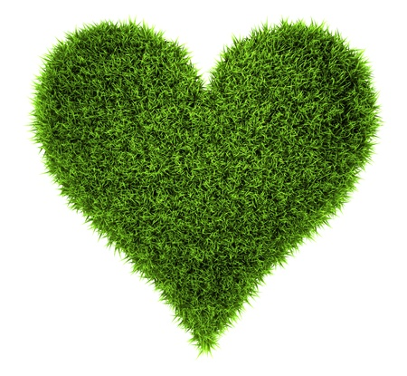 Grass heart isolated on white background, 3d render