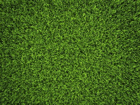 blades of grass: Grass background, fresh green soccer turf, 3d render