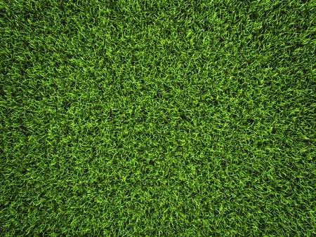 Grass Hintergrund, frischen grünen Fußball-Rasen, 3d render
