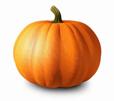 cucurbit: Pumpkin on white background, 3d illustration Stock Photo