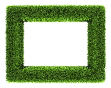 Grass frame isolated on white background  3d render