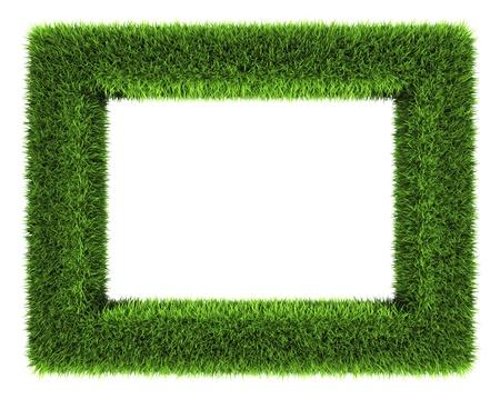 Grass Frame auf weißem Hintergrund 3d render isoliert