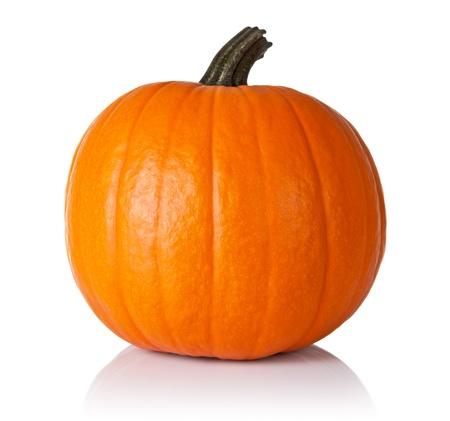 calabazas de halloween: Calabaza naranja fresca aislado sobre fondo blanco Foto de archivo
