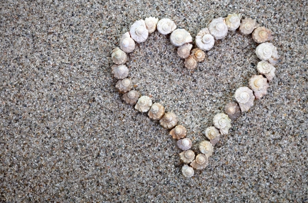 Shells heart on beach background. Summer composition with copy space. Top view photo