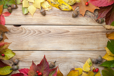 Autumn leaves and acorns on wood background. Copy space. Top view Stock Photo